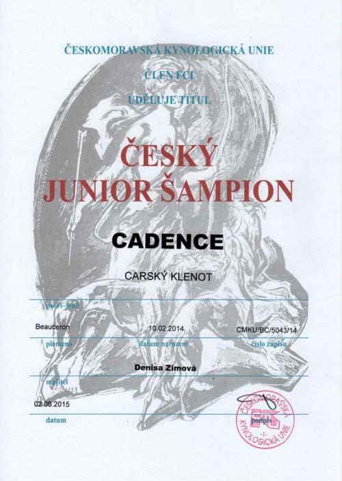 cadence-jch-cz.jpg