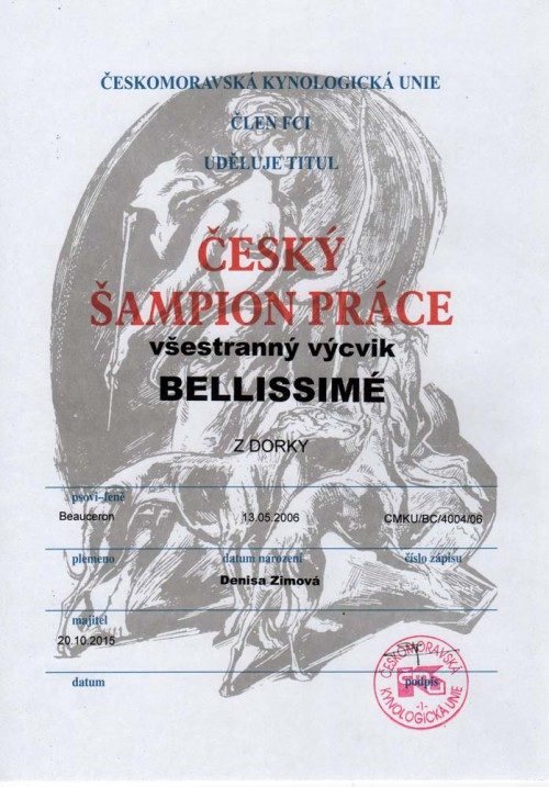 bellinka-sampion-prace.jpg